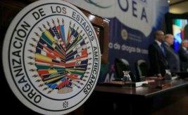 Vocero de UE negó ante la OEA que la misión a Venezuela represente un cambio de postura