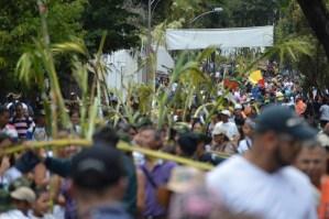 Por primera vez en 244 años los palmeros de Chacao no subirán a El Ávila