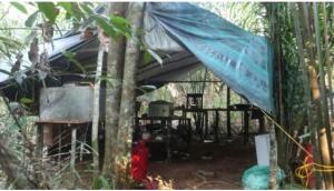 Desmantelaron ocho grandes laboratorios clandestinos de cocaína en Zulia