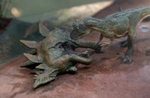 EN FOTOS: Descubren una nueva especie de dinosaurio en Brasil que vivió hace 115 millones de años