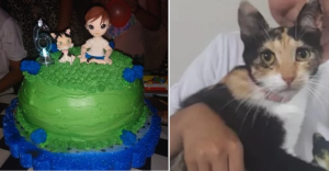 ¡Hermoso! Este niño hizo una fiesta de cumpleaños con la temática de su gatita rescatada (VIDEO)
