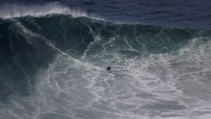 ¡Qué susto! Surfista se encontró con un tiburón martillo mientras esperaba su ola (Video)