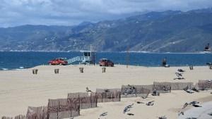 El turismo se hizo virtual en una California confinada por el coronavirus