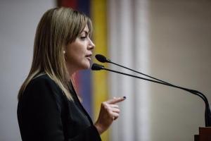 Diputada Jaramillo exigió la libertad inmediata de Juan Requesens