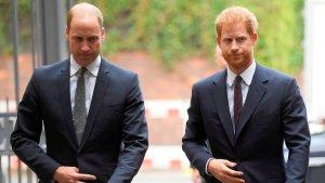 Revelaron que William y Harry tuvieron una feroz pelea cara a cara por Meghan