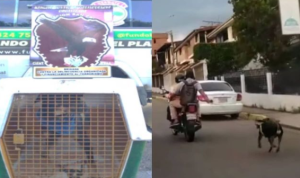 Detienen a hombre que arrastró a su perro atado con mecate mientras iba en una moto en Táchira