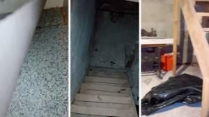 ¡Insólito! Descubrió un sótano secreto en su casa al levantar una vieja alfombra (Videos)