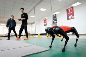 Ni ladra, ni muerde, pero hace los quehaceres: Así es el perro-robot en China que todos quieren en casa