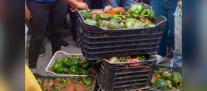 En Tintorero se pierden las cosechas por falta de combustible