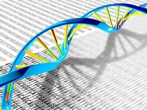 Un grupo de científicos anunció que secuenció por primera vez todo el genoma humano