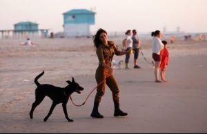 Los efectos secundarios no conocidos de tener un perro, según la ciencia
