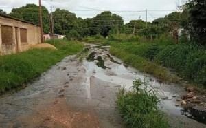 Más de 300 familias afectadas por el colapso de aguas servidas en Guárico