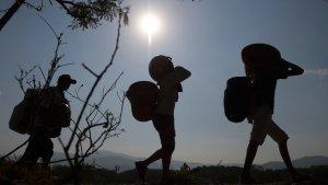 Diputada Vera denunció el fallecimiento de dos venezolanos que transitaban por la trocha La Platanera